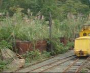 機関車の入替作業の様子